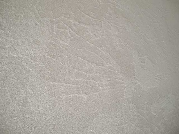 Egg shell type cracking in plaster??-sany0850.jpg
