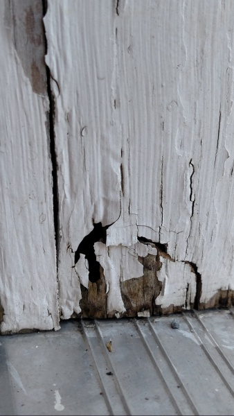 Wood Rot Or Termite Damage General Diy Discussions