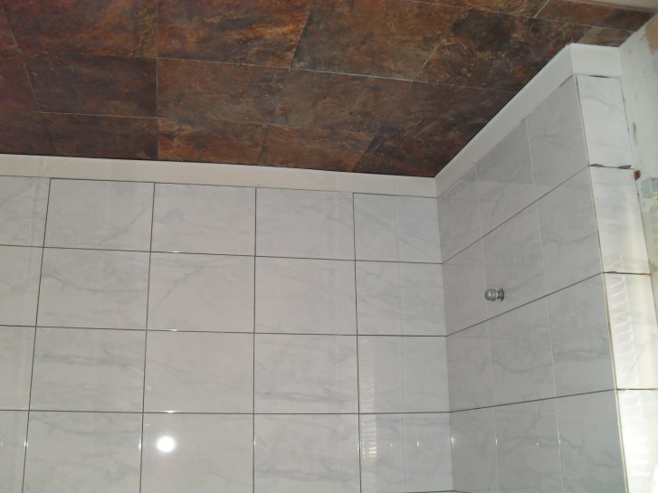 contrasting tiles in bathroom-sdc10187.jpg