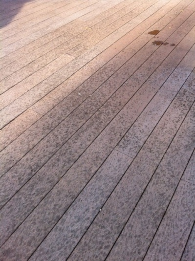TREX decking extremely disappointing-securedownload.jpg