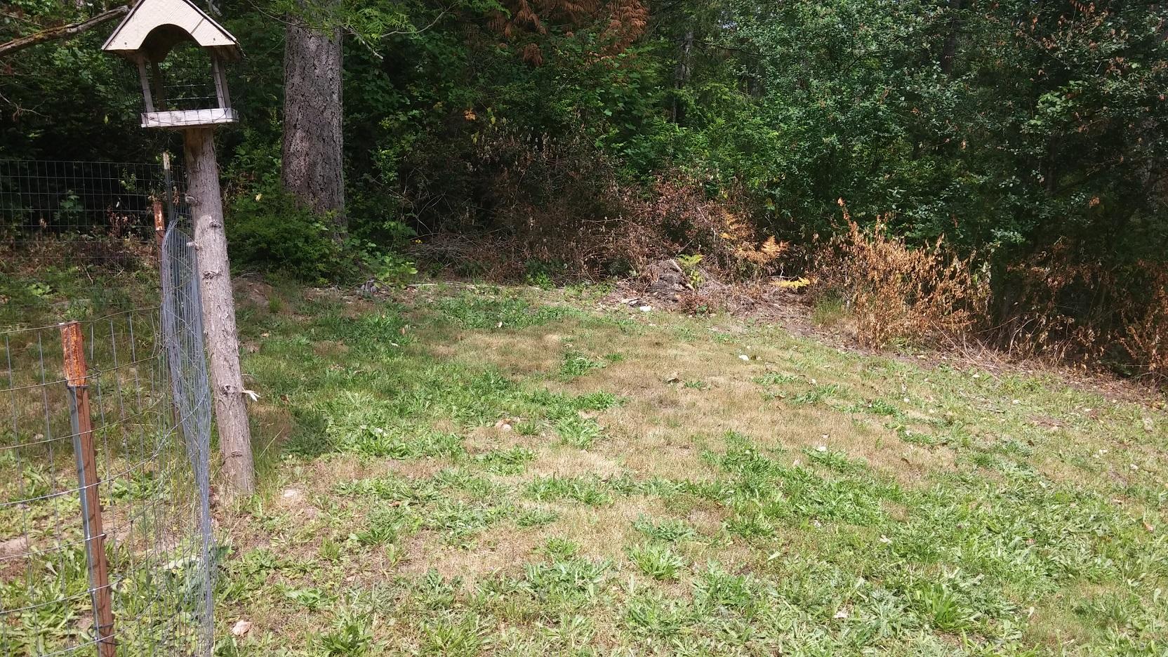 Planting in close proximity to septic tank-septic-tank-5.jpg