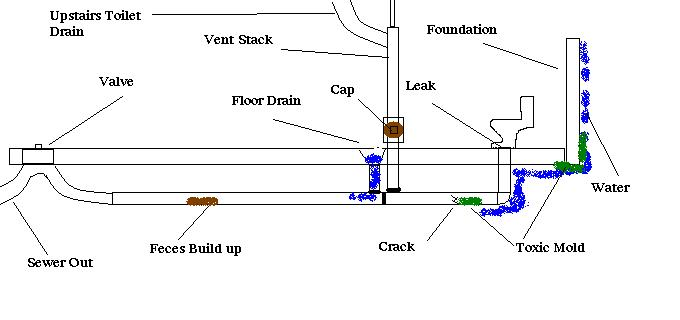 Bubbling Toilet, Pilot Light in furnace out, extremely sick-sewer-drain-vent-stack-diagram.jpg