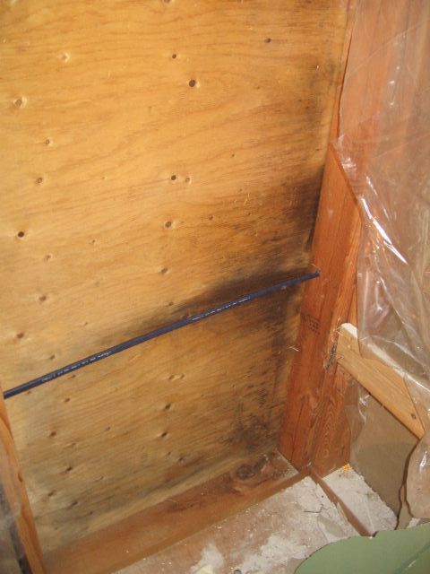 Exterior Wall in Bathroom-sheathing.jpg