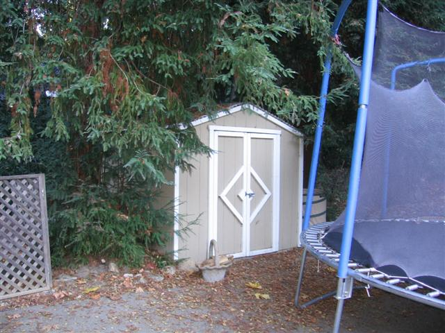 Looking to do large shed-shed-saturday-morning-small-.jpg