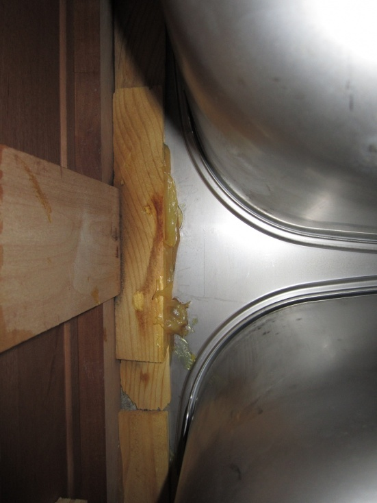 Resetting Undermount Kitchen Sink-shims-r-.jpg
