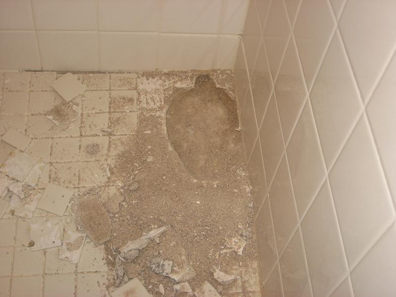 Loose Sand Under Shower Tiles Pictures  Kitchen & Bath