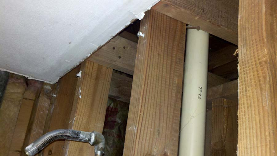 remodeling a shower... what's this pipe for?-shower-2-copy.jpg