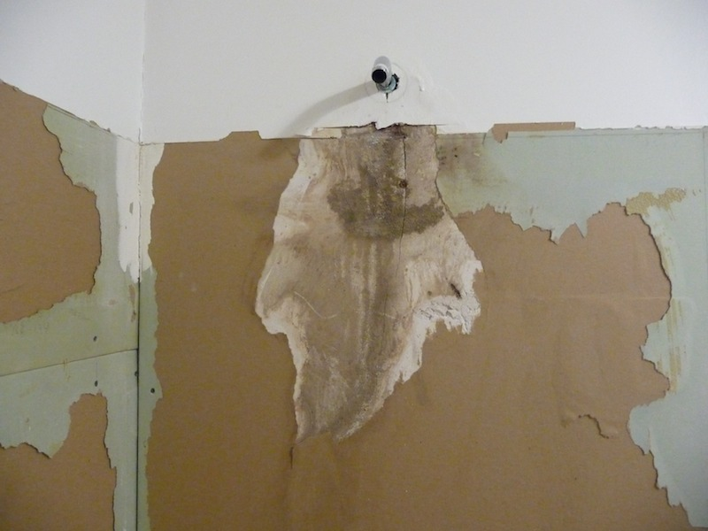 Off work for the next week completely remodeling bathroom-shower-head-damage.jpg