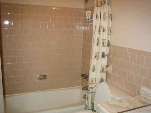My Bathroom Renovation Remodeling DIY Chatroom Home Improvement - What do i need to remodel my bathroom