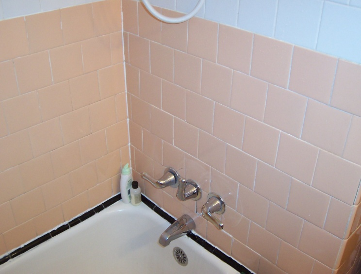 Please give me some basic advice on fixing up my bath/shower tile.-shower_tile-003.jpg