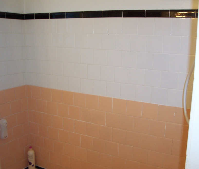 Please give me some basic advice on fixing up my bath/shower tile.-shower_tile-004.jpg