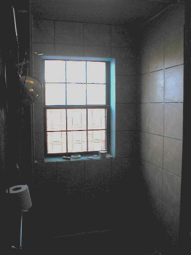 Tiling shower, how long?-showerwindow.jpg