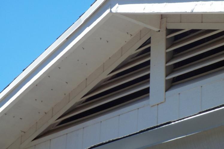 Standard thickness of roof sheathing in Phoenix-side.jpg