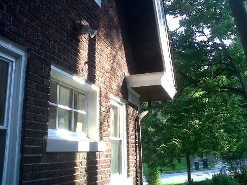 Advice on priority of repairs: gutters and basement-side-view-front-downspout.jpg