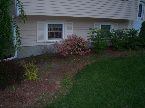 How to regain control of these mulch beds... *PICS*-side-view-right-mulch.jpg
