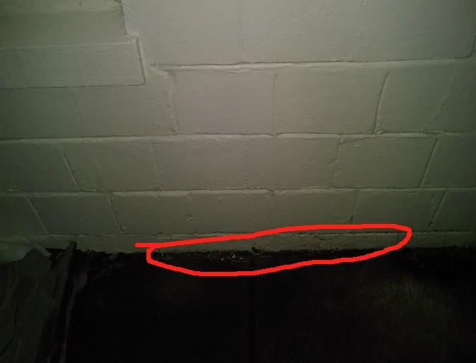What kind of sealer should I be using? Pictures included.-sidewalk2.jpg
