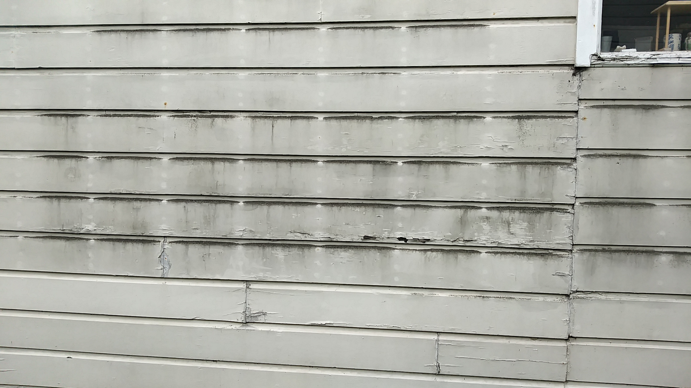 New building will adjoin mine. Should I waterproof my siding?-siding-1.jpg