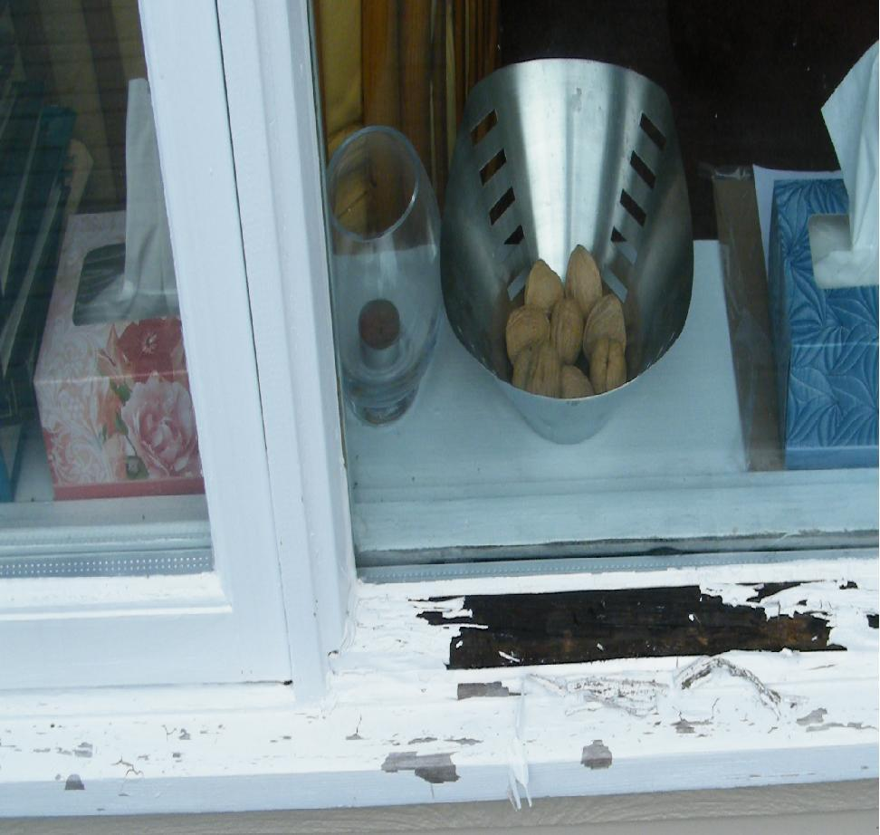 Rotten Window frame/sill-sillext.jpg
