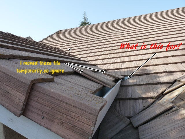 Small Leak, something missing on roof?-small-gutter1a.jpg