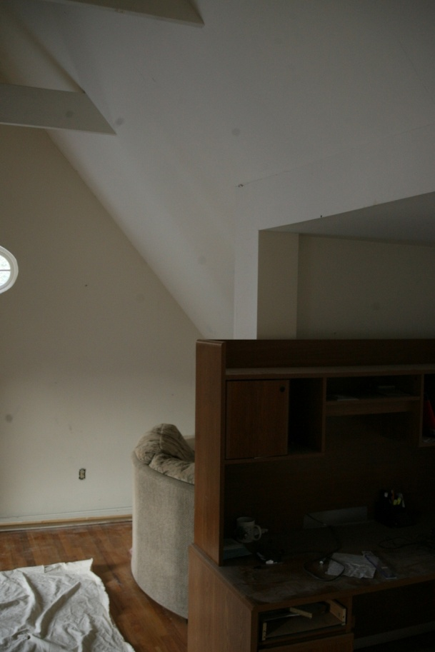 Adding Collar Ties to make a ceiling-smf_5940.jpg