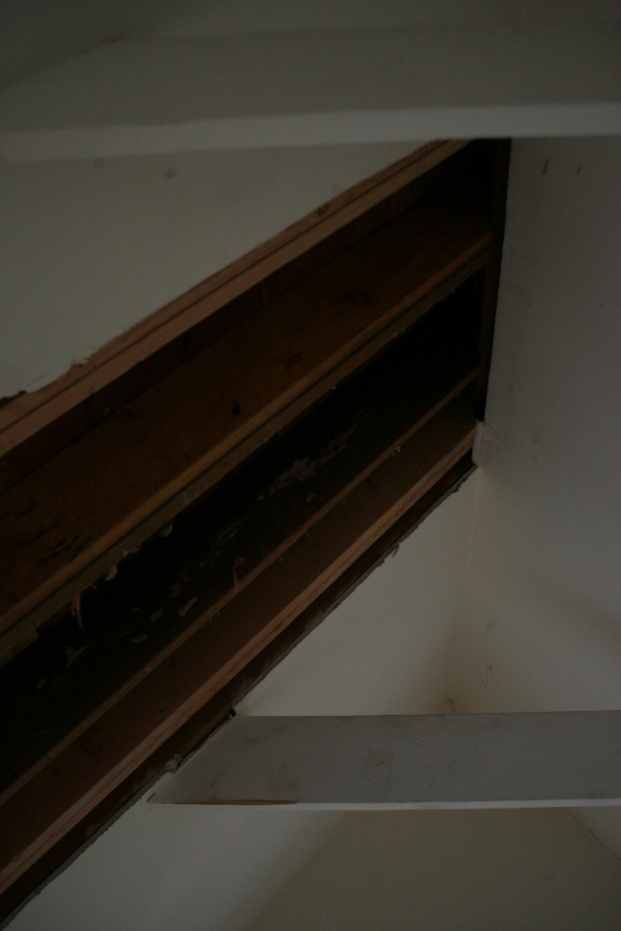 Adding Collar Ties to make a ceiling-smf_5941.jpg