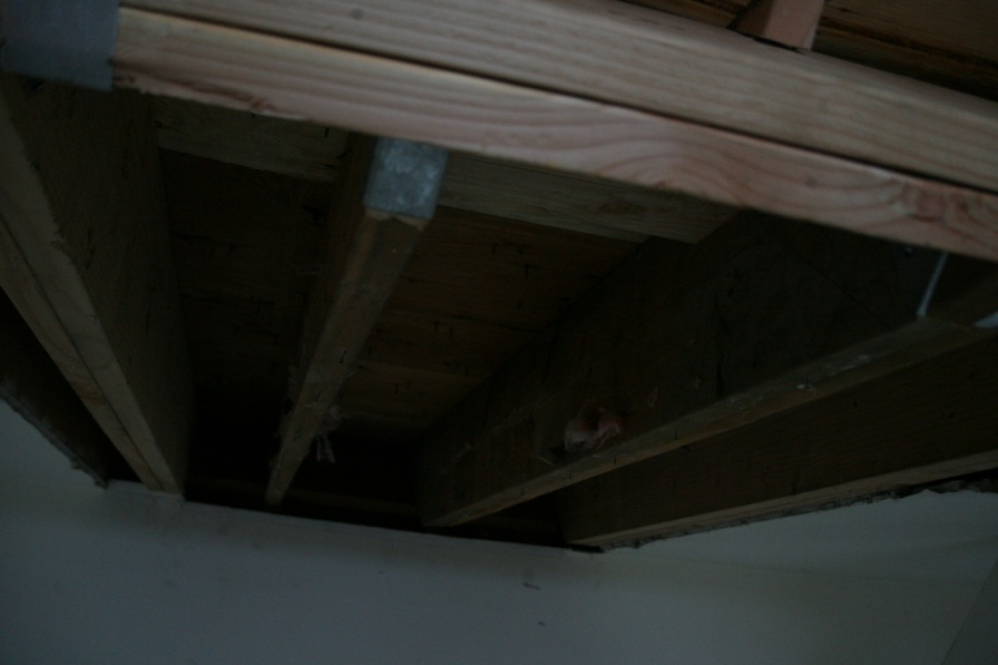 Adding Collar Ties to make a ceiling-smf_5962.jpg