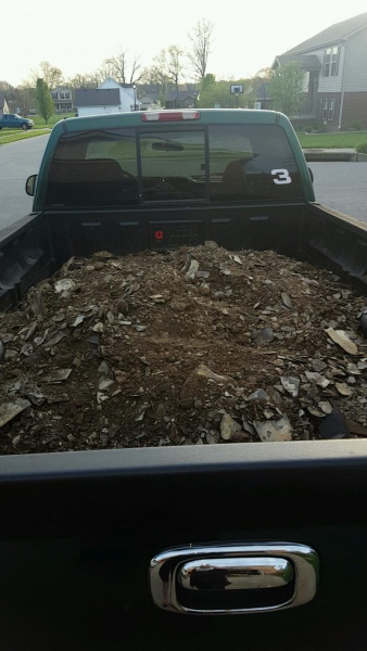 Too much rock for grass?-snapchat-1861492363_1492042265143.jpg