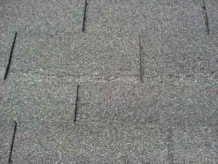 Help!!! Why do I need to replace an 8 year old roof & how correct the problem?-spidering.jpg