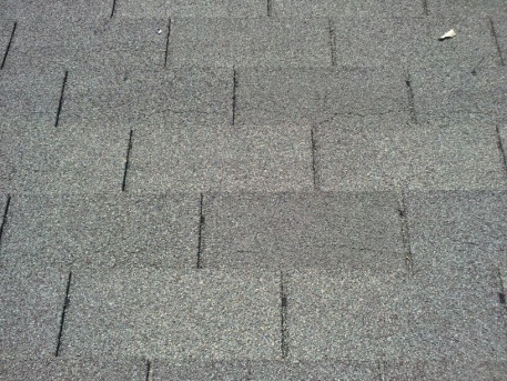 Help!!! Why do I need to replace an 8 year old roof & how correct the problem?-spidering2.jpg