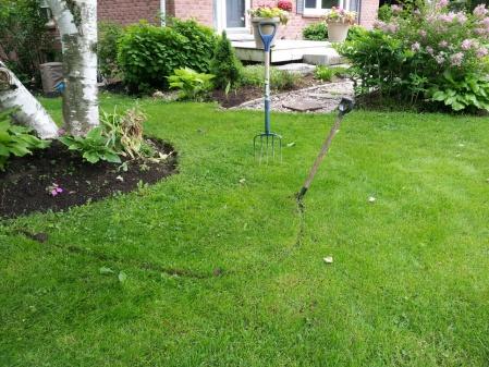 A little garden how-to-spot.jpg