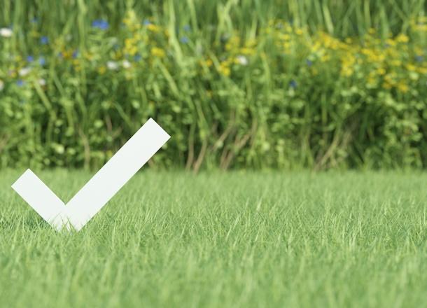 Springtime DIY Checklist for Homeowners