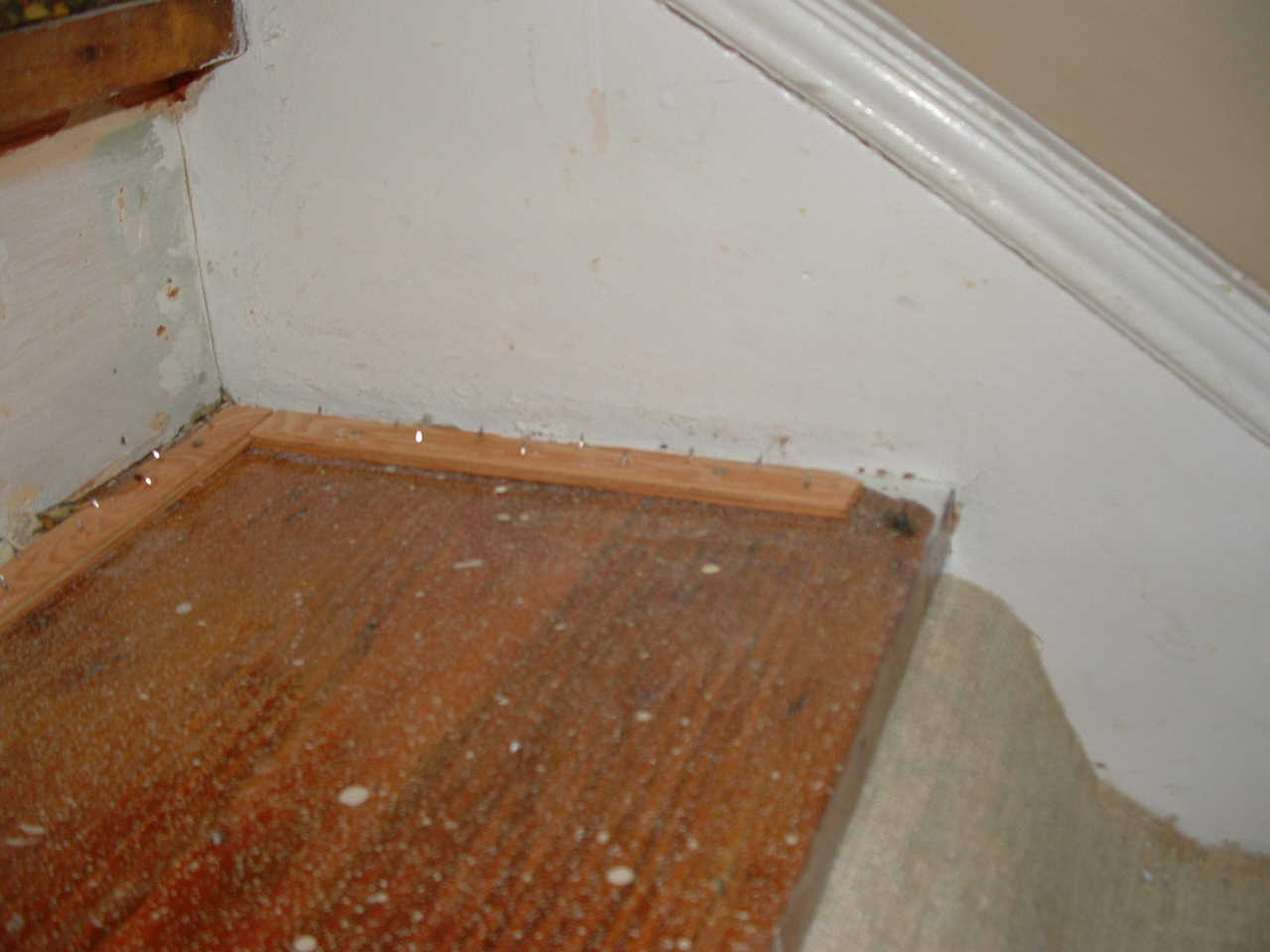 Stairs  refinish/rebuild ????-stair2.jpg