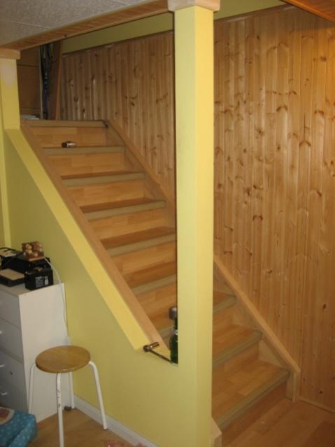 Basement handrails in Ontario - help!-stairs.jpg