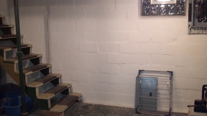 Basement Steps-step3.jpg