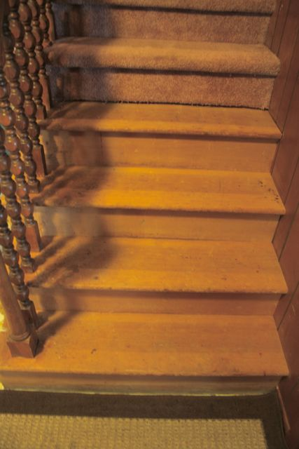 Re-finishing once carpeted (bare) stairs...-steps.jpg