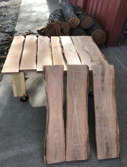 Bandsaw Mill-steve-mesquite-10-slabs-2-15-19.jpg