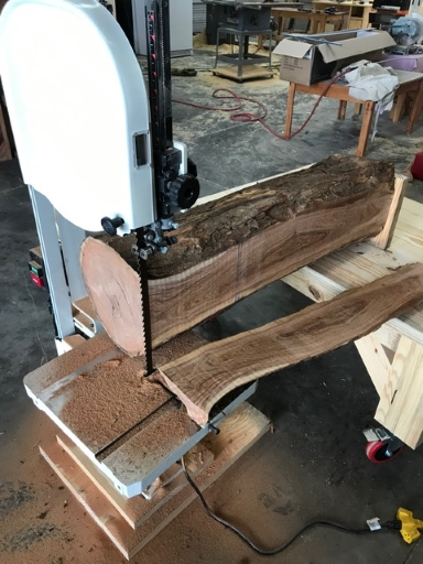 Bandsaw Mill-steve-mesquite-log-sawed-2-15-19.jpg