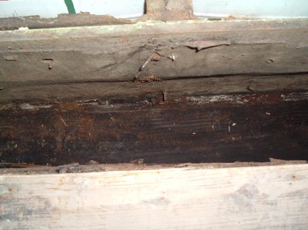 Help! How do I fix rotten wood under door?-straight-down.jpg