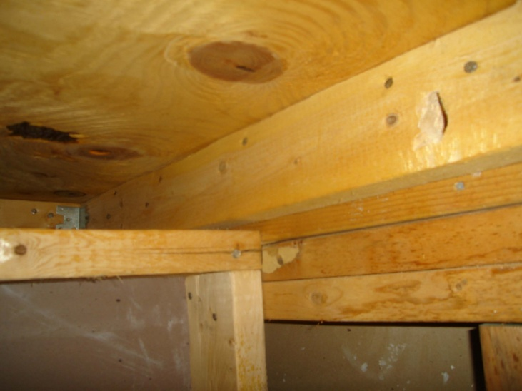 load bearing? I want to put in a pocket door under stairs-stud3.jpg