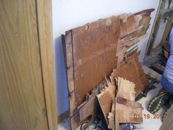 Black Mold On Plywood Subfloor - Flooring - DIY Chatroom Home