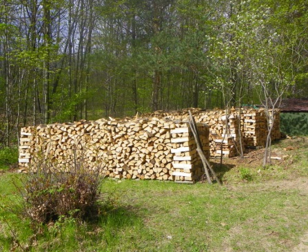 How Do Suburban Dwellers Store Firewood?-summer-wood-stacks-2-cords-each.jpg