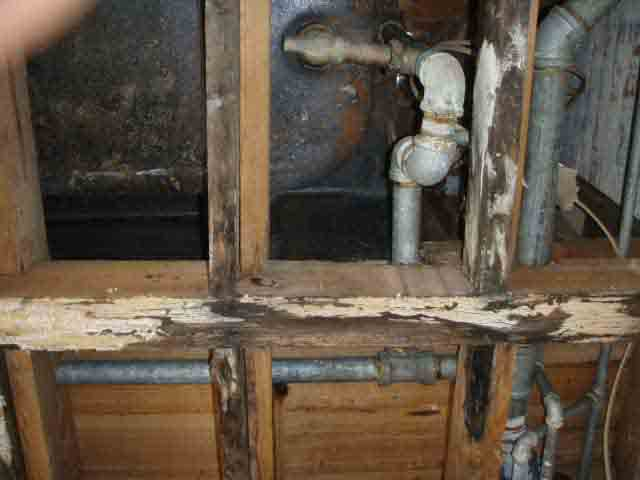 Floor Joist damage - bathing my way to disaster?-sunporch-joist-damage.4-copy.w.jpg