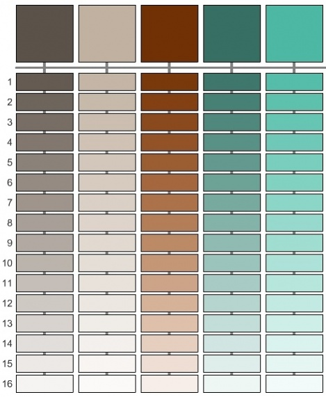 Stone fireplace and wall color-swatches.jpg