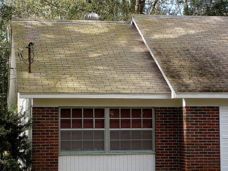 Cleaning roof ?-tampa-roof-cleaning-002.jpg