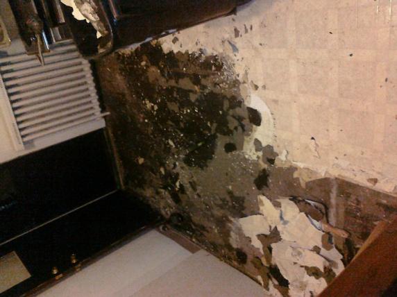 Black tar paper under linoleum-Asbestos concern?-tar-paper3.jpg