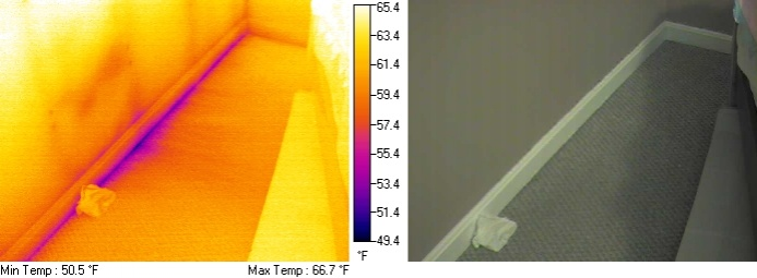 FLIR Thermal Imaging Scan - Insulation Issues-th780011.jpg