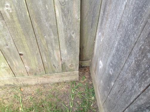 Fence Gate-house-5-.jpg