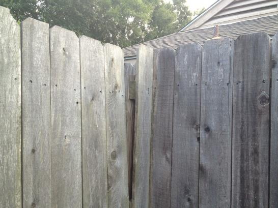 Fence Gate-house-7-.jpg
