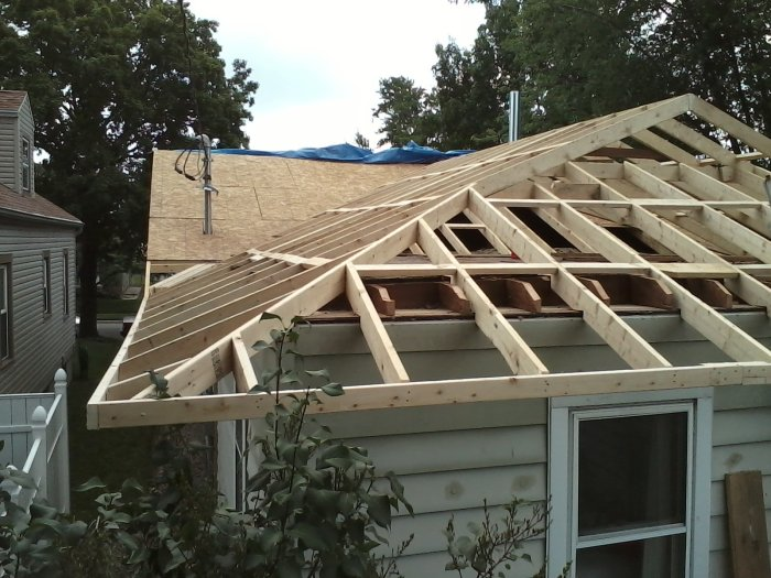 Novice roofer-thursday.jpg