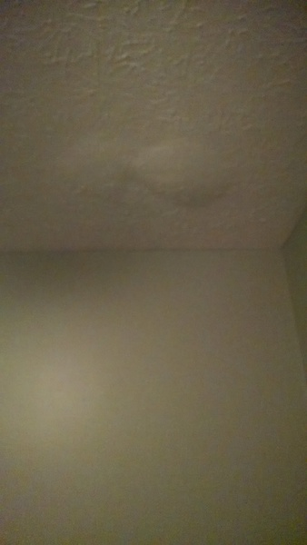 Bubbling Ceiling After Painting Wallls